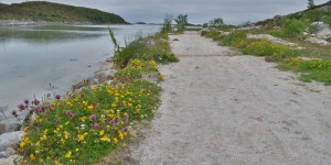 Wanderweg am Torghatten