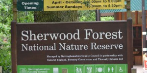 Naturreservat Sherwood Forest
