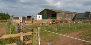 Stellplatz auf einem Bauernhof