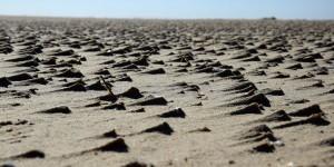Vom Sand geformt