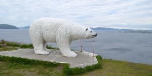 Eisbärenclub in Hammerfest