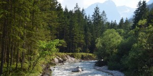 Fluss im Nationalpark