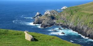 Wandern im Norden der Shetland-Inseln