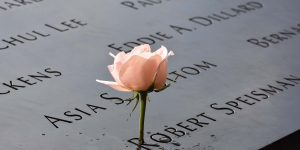 Rose am Ground Zero