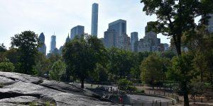 Blick aus dem Central Park