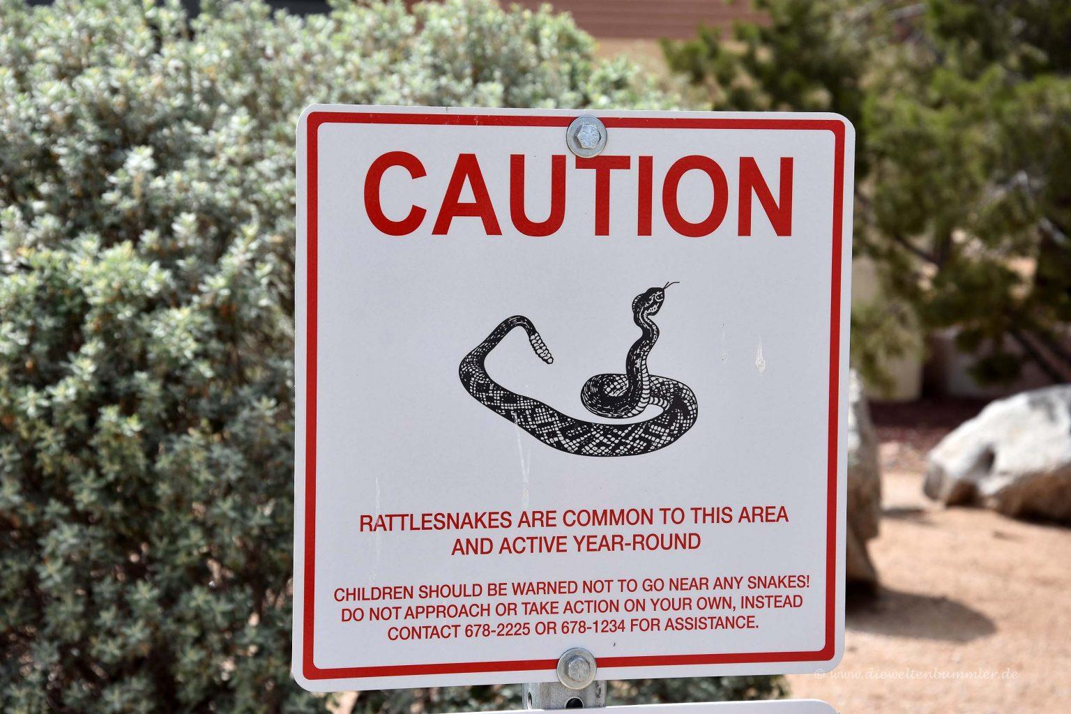 Achtung Schlangen