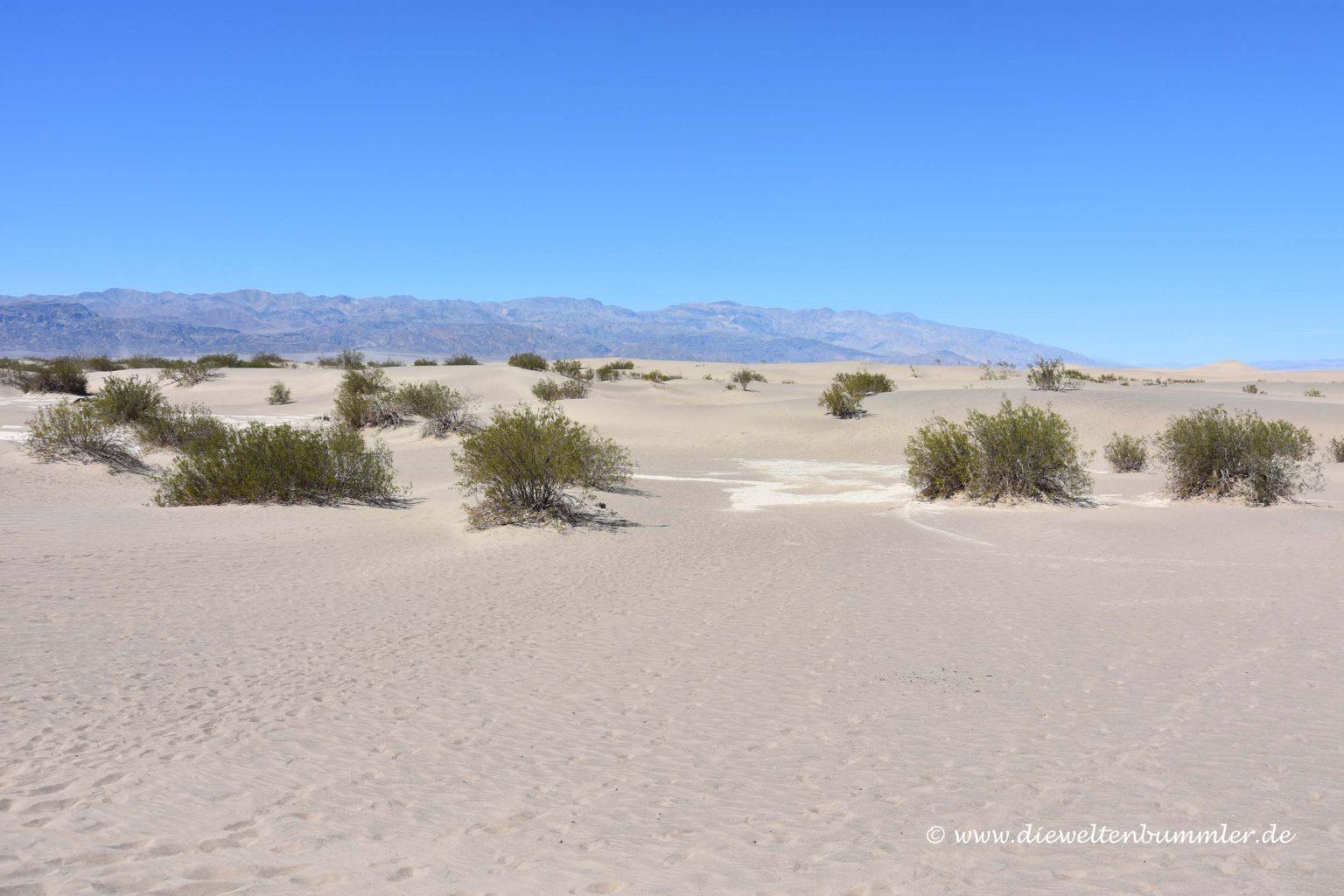 Dünenlandschaft im Death Valley