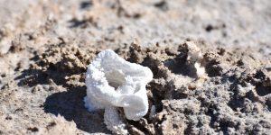 Kleine Salzstruktur