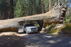 Mit dem Auto durch den Tunnel Log