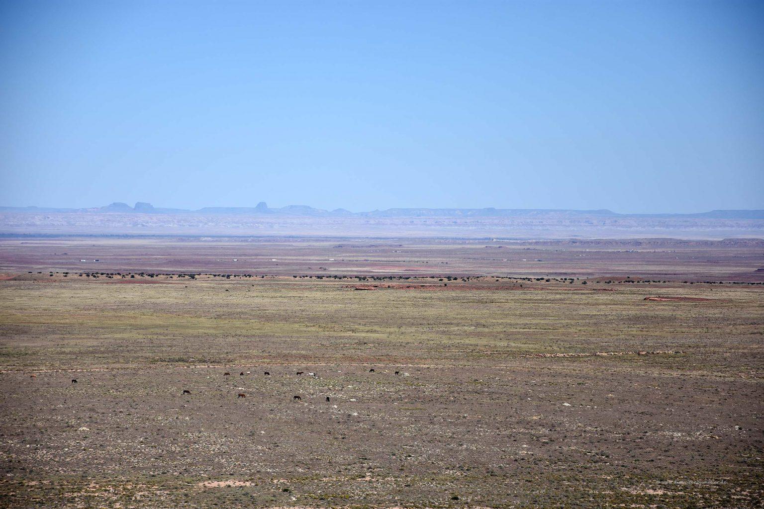 Weite Landschaft in der Wüste von Arizona