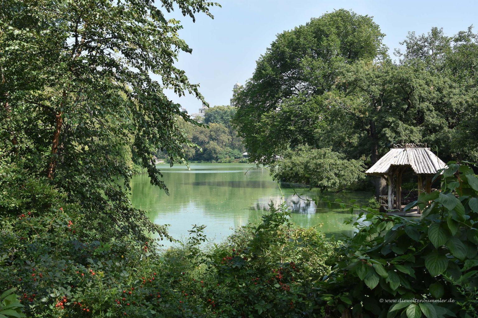 Einer der Seen im Park