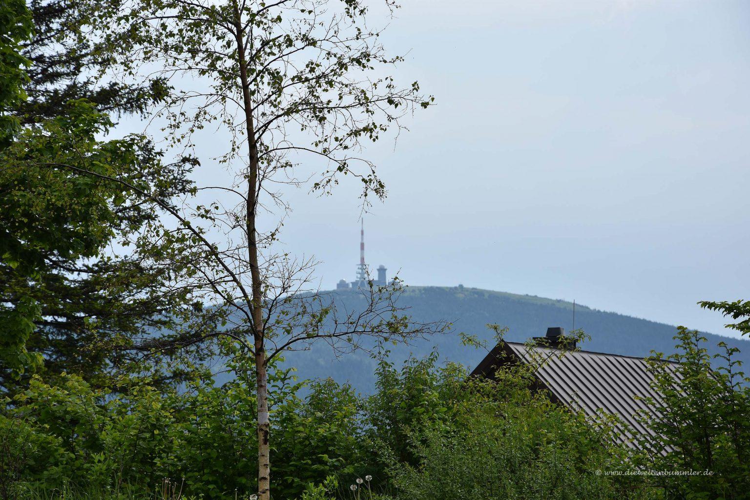 Blick vom Torfhaus zum Brocken