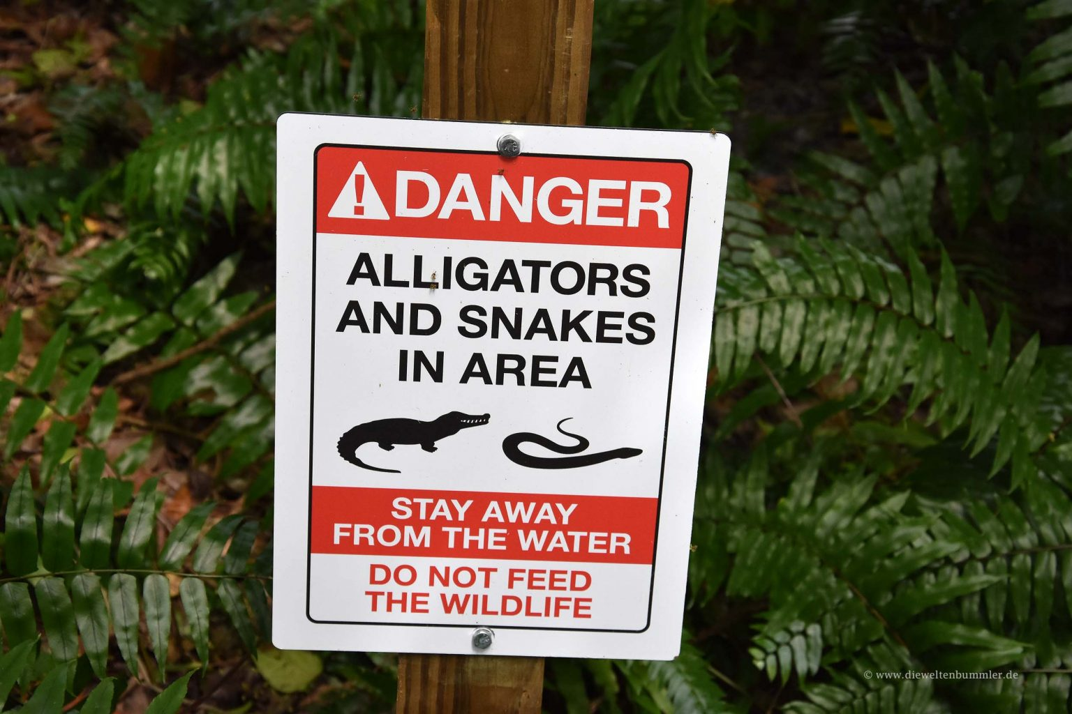 Warnhinweis vor Alligatoren