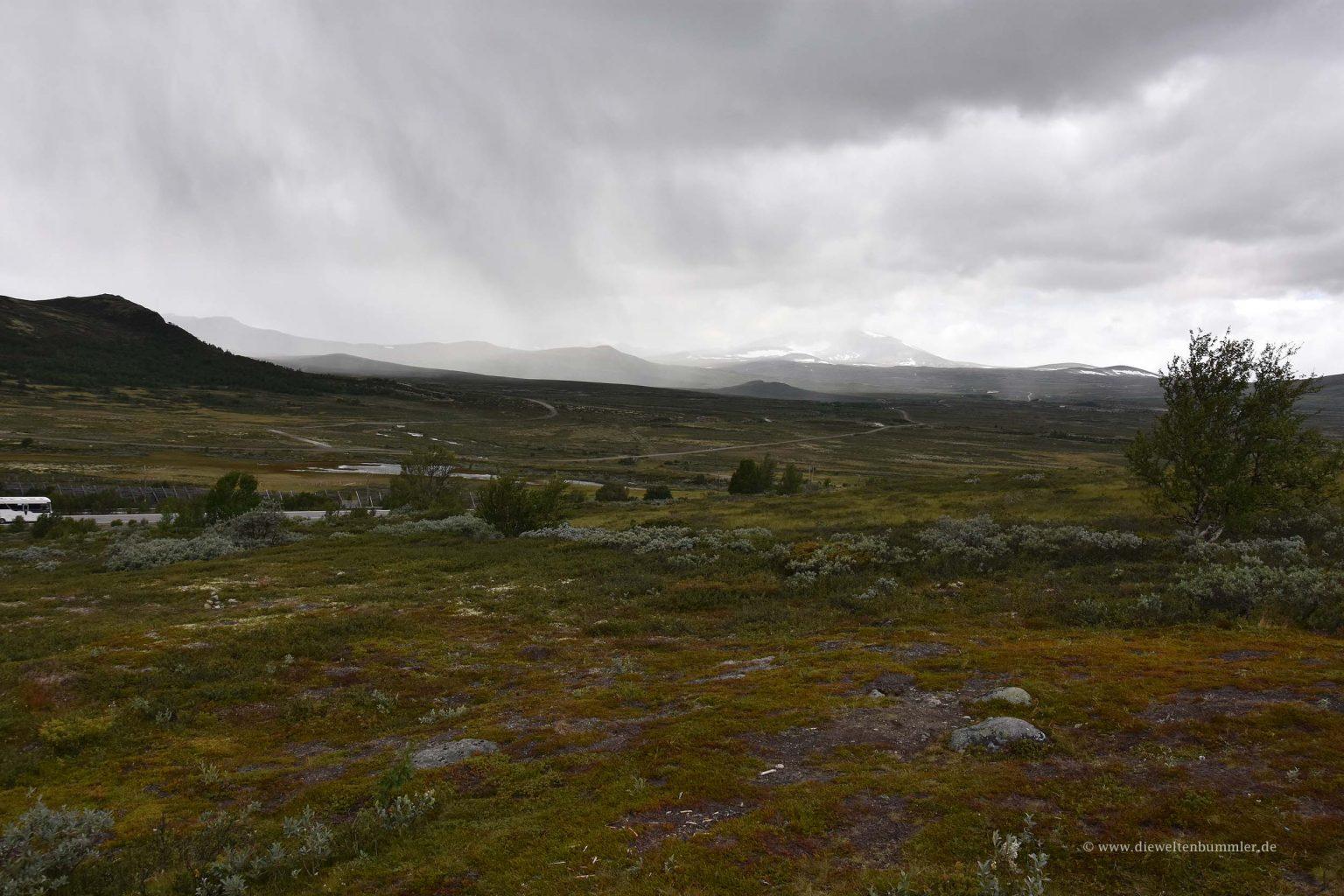 Durchquerung des Dovrefjell-Nationalparks