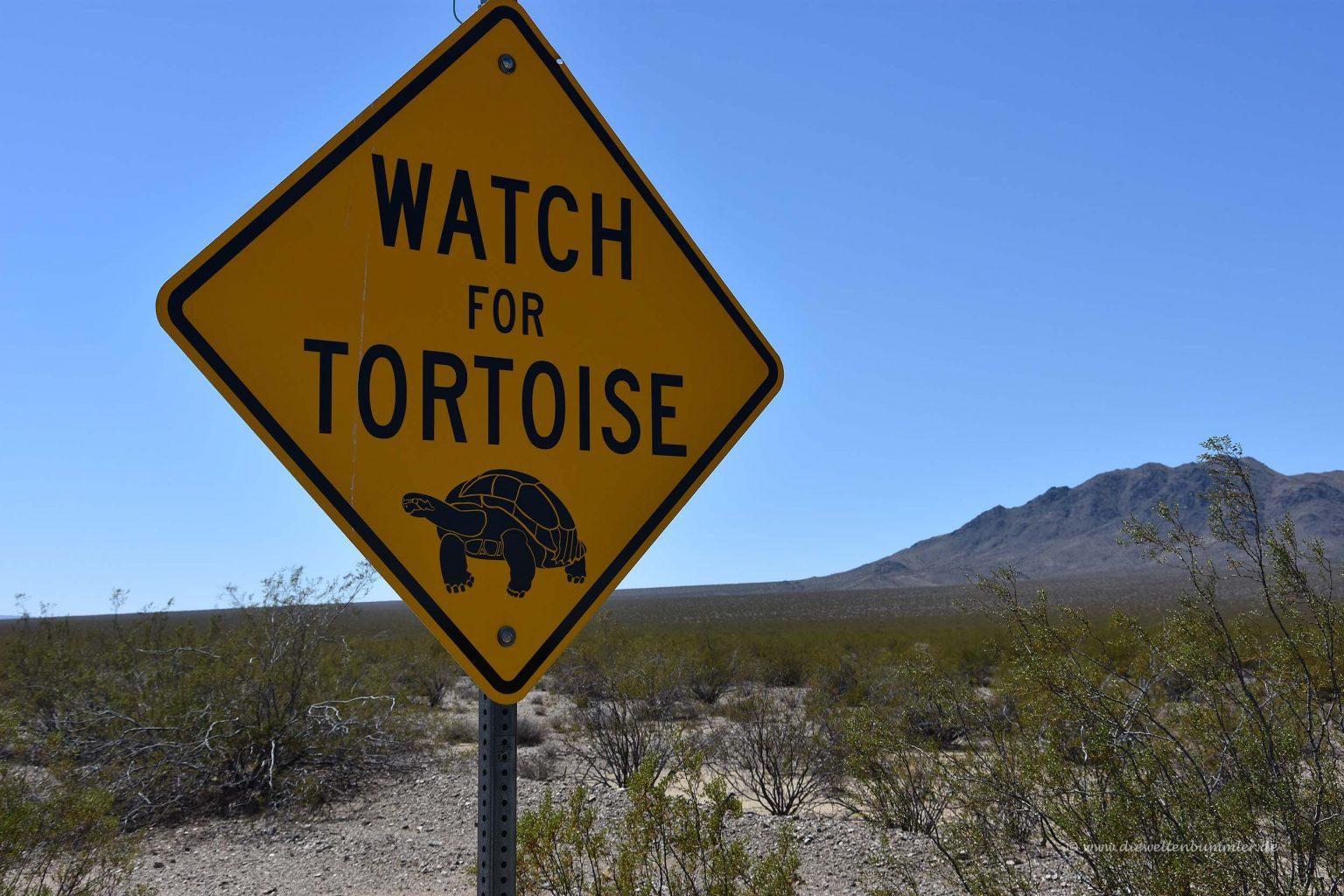 Achtung Schildkröten