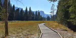 Kleiner Wanderweg auf Holzbohlen