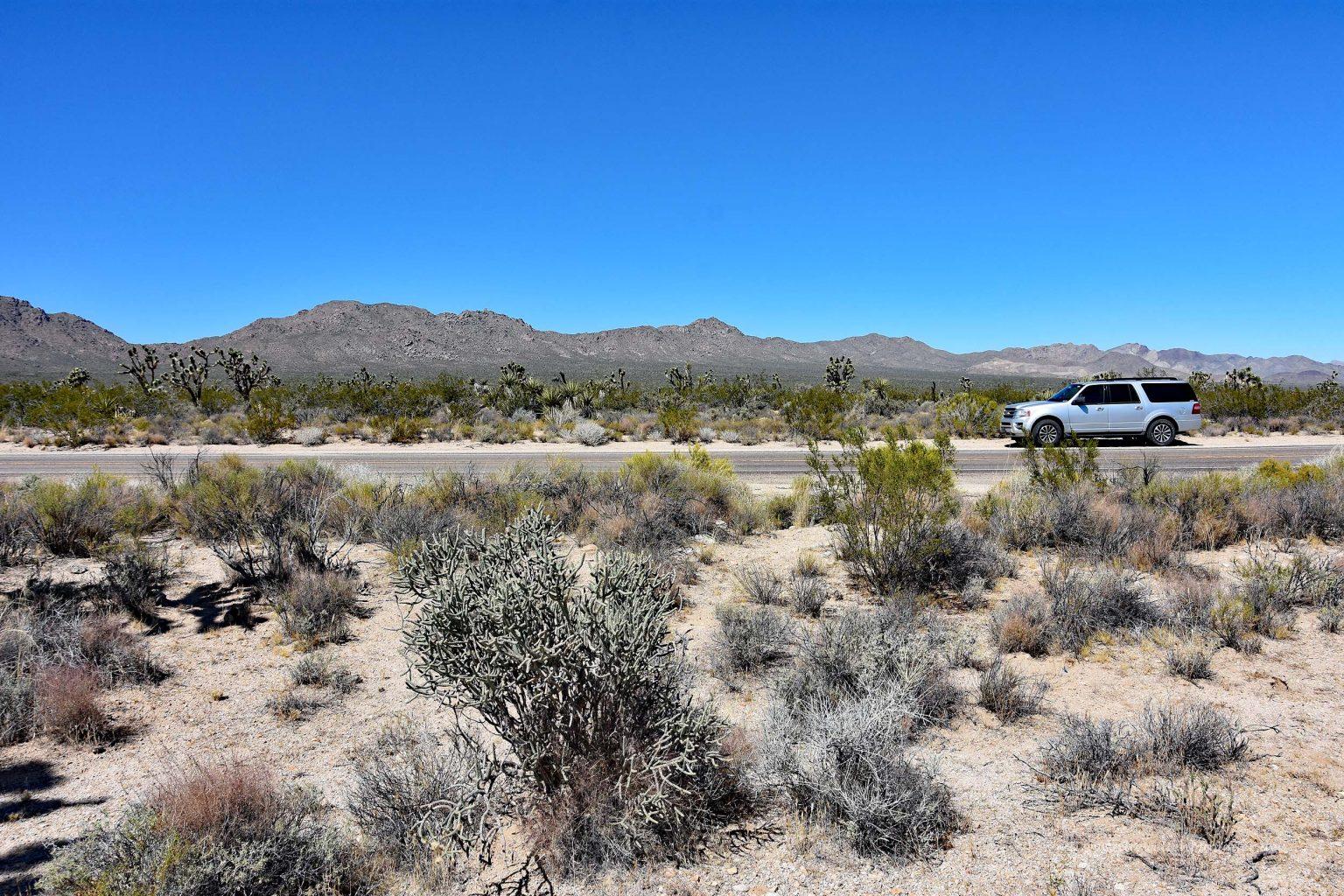 Mit dem SUV durch die Wüste der USA