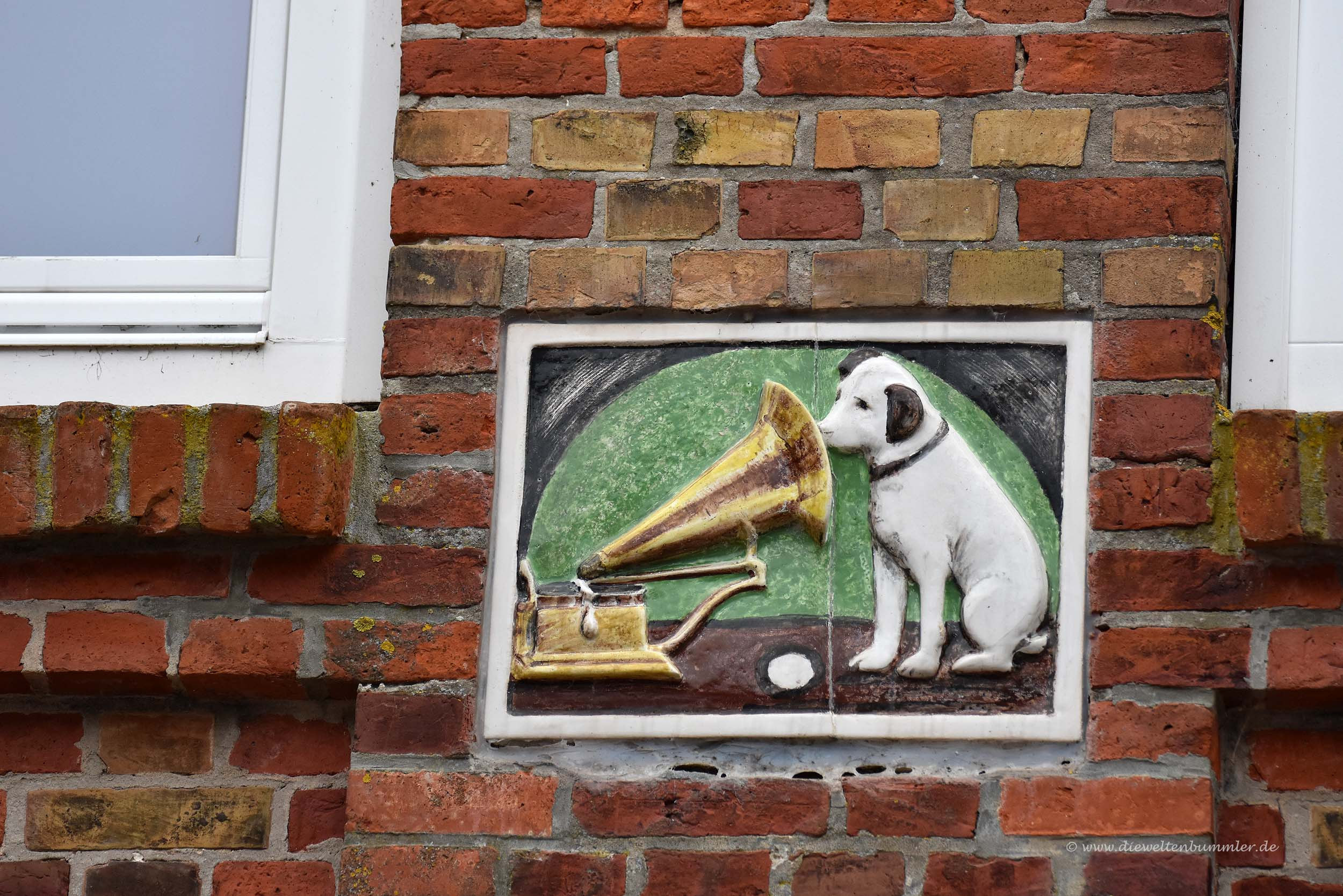 Musikalischer Hund
