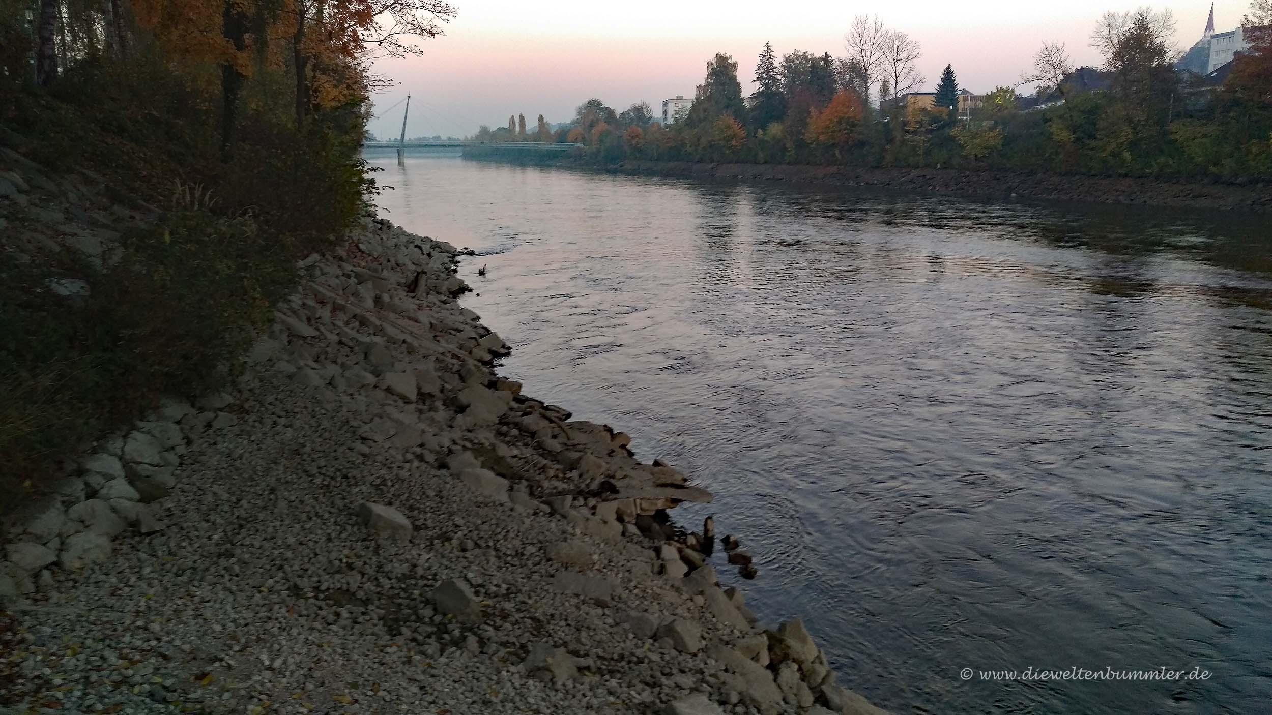 Die Traun fließt südlich von Wels