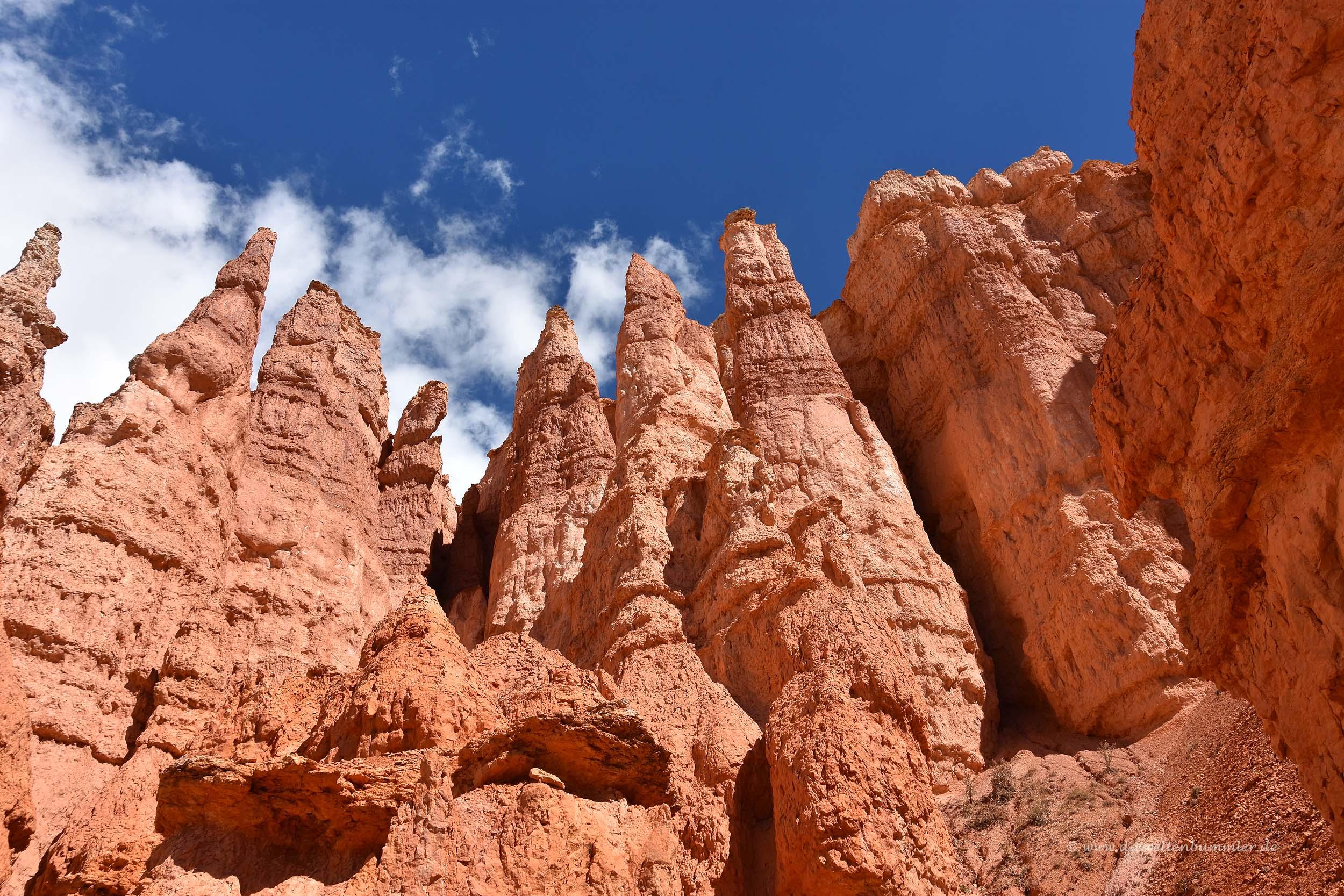 Hoodoos im Bryce Canyon