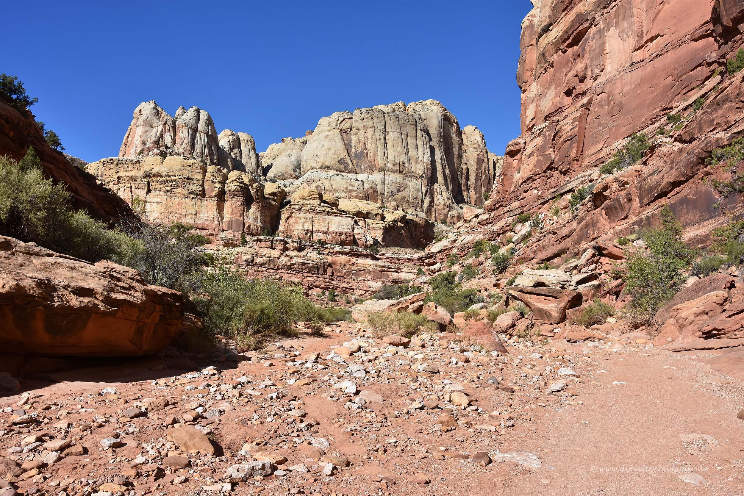 Markante und rote Felsen überall