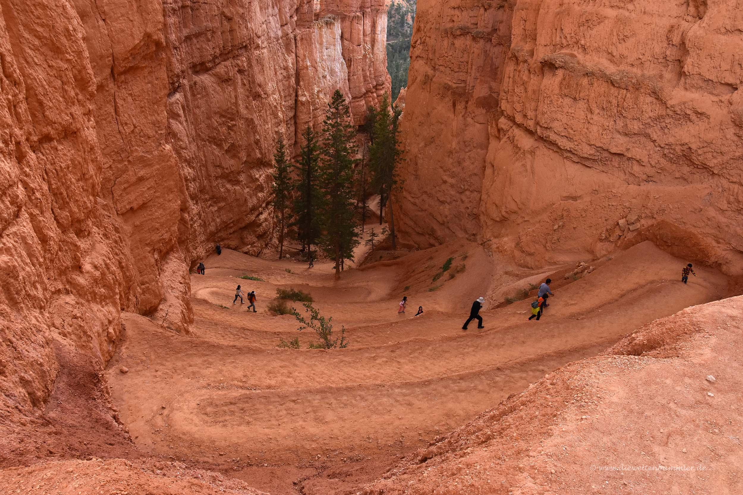 Wanderweg im Bryce Canyon