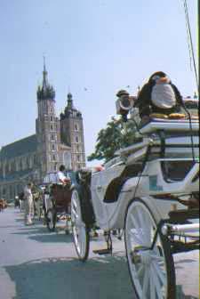 Kutsche in Krakau