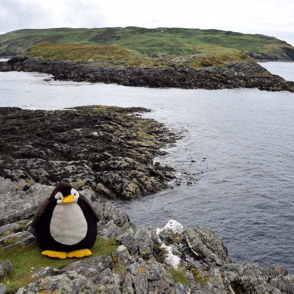 Kitterland vor der Isle of Man