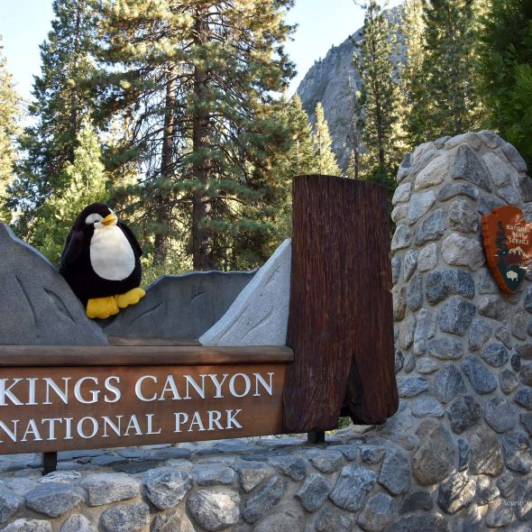 Kings Canyon Nationalpark