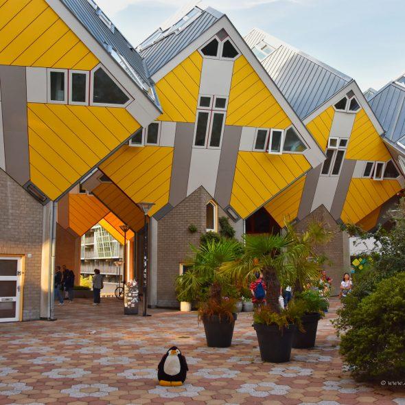 Kubus-Häuser in Rotterdam