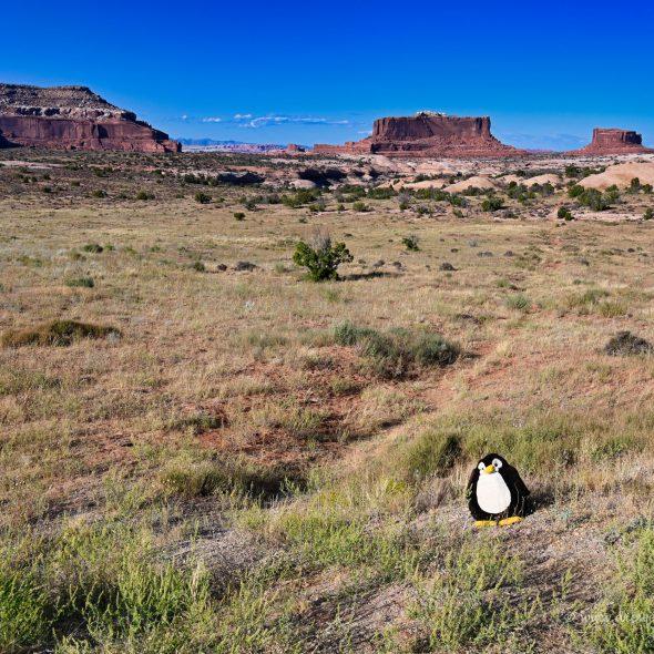 Merrimac Butte bei Moab