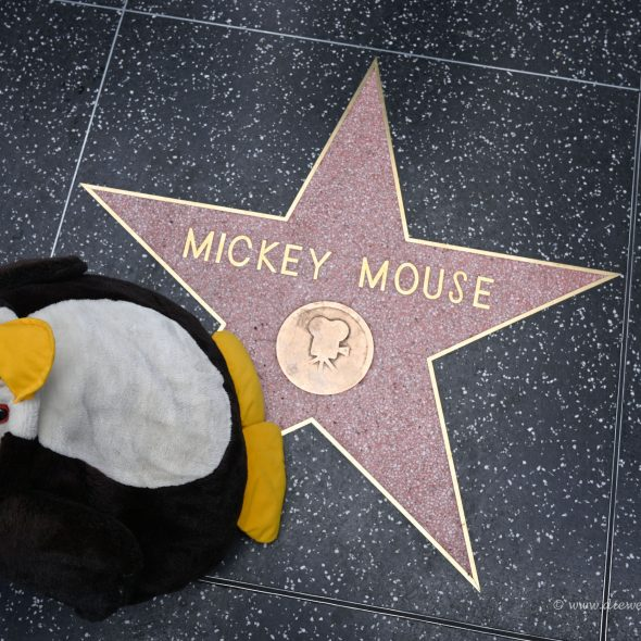 Walk of Fame - Micky Maus