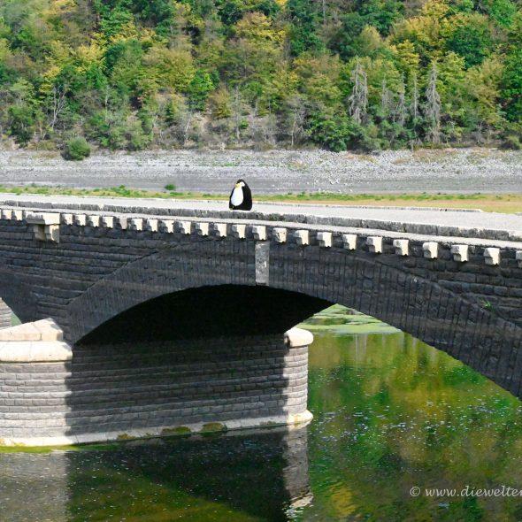 Edersee - Aseler Brücke