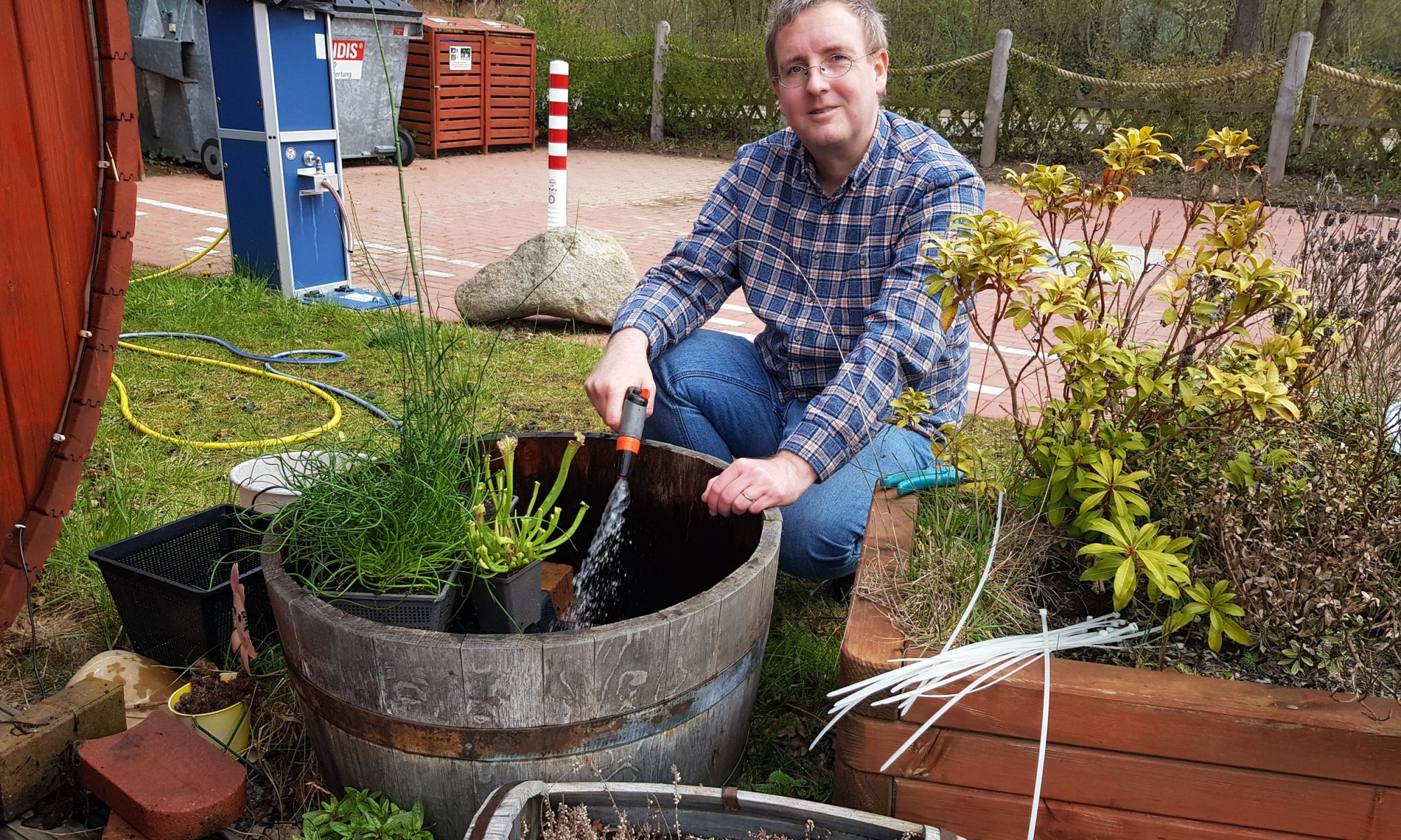 Neue Wasserpflanzen für einen Miniteich