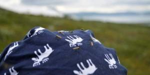 Große Mücken in Finnland