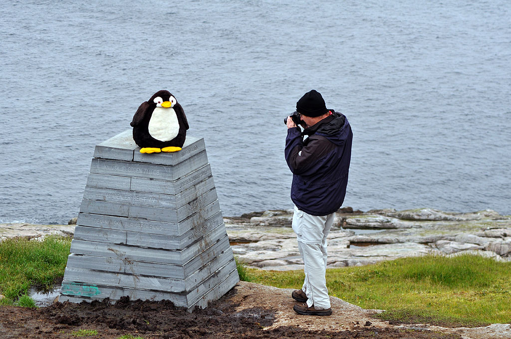 Pingu am Knivskjelodden