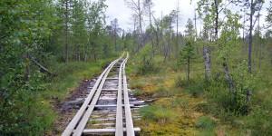 Wanderung im Bärengebiet