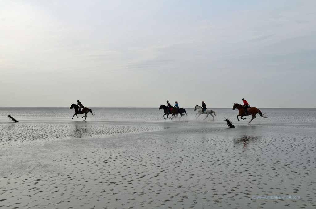 Reiter im Wattenmeer