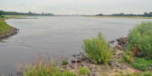 Erft in den Rhein