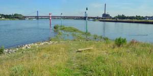 Ruhr in den Rhein