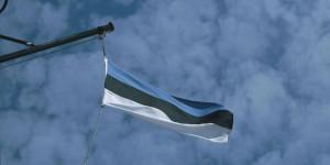 Estnische Flagge