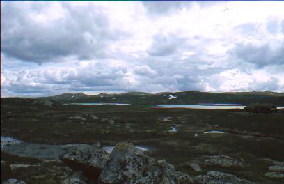 Wandern in der Hardangervidda