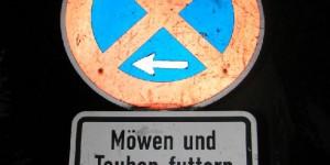 Möwen füttern verboten