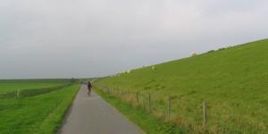 Radweg am Deich