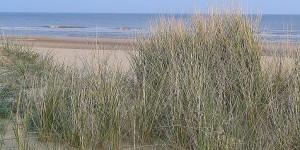 Am Strand von Holland