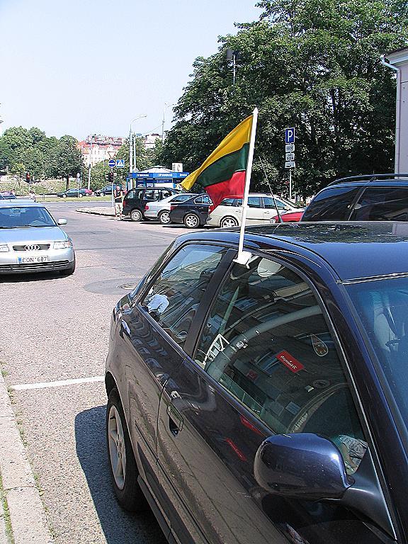 Litauische Flagge