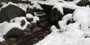 Donauquelle im Schnee