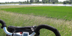Radeln auf dem Rheinradweg