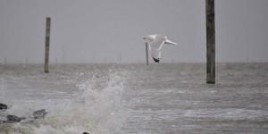 Stürmische Nordsee