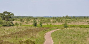 Wanderweg in De Groote Peel
